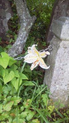 神社周辺ヤマユリ
