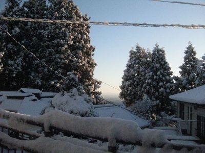 嶺雲荘からの風景